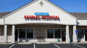 Bryan Road Animal Hospital - 2014